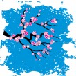 Japanese grungy style sakura blossom  - vector illustration — Stock Vector