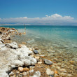Stock Photo: Dead Sea coast, Israel
