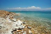 Dead Sea coast, Israel — Stock Photo