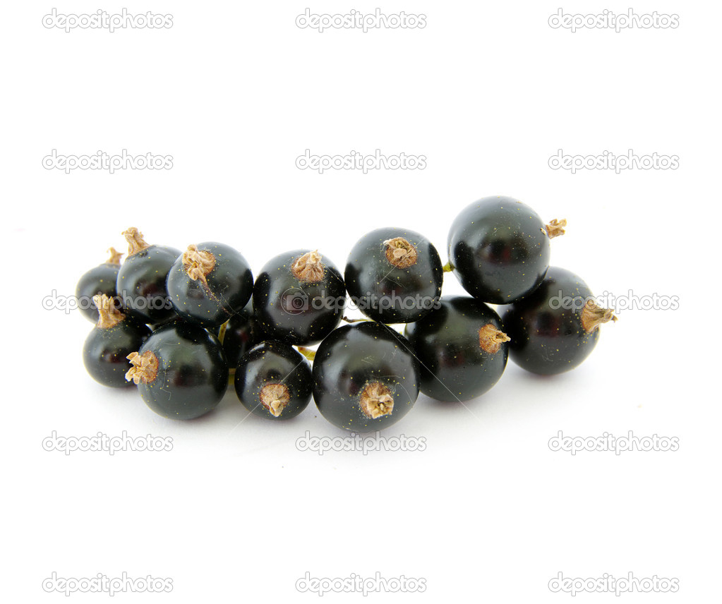 Black currant fruits with a leaf — Stock Photo #5479791