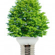 Green energy — Stock Photo
