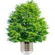 Green energy — Stock Photo #5946165