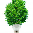 Green energy - Stok fotoraf