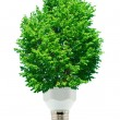 Green energy — Stock Photo #5946437