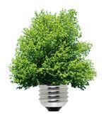 Green energy — Zdjęcie stockowe