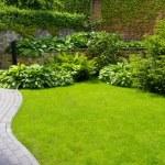 Garden — Stock Photo #5452478