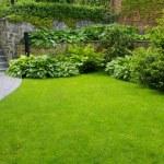 Garden — Stock Photo #5452518
