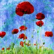 Grunge poppies background — Stock Photo #5453088