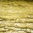 Wood texture - Stock fotografie