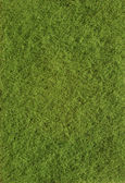 Green texture of grass — Stock Photo