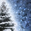 Christmas tree — Stockfoto #6331992