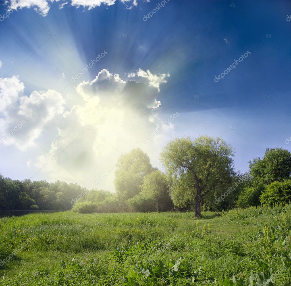 Green meadow under blue sky with clouds — Stock Photo #6334837