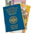 Kyrgyz passport and money, isolated on white background — Stock Photo