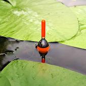 Balıkçılık float — Stok fotoğraf