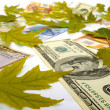 Stock Photo: Dollars, Euro and autumn leaves