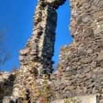 Nevytsky Castle in Zakarpattya, Ukraine — Stock Photo #5524959