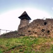 Nevitsky Castle ruins Ukraine Built in 13th century — Stock Photo