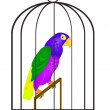Stock Vector: Parrot in hutch