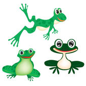 Illustration green frog on white — Stock Vector