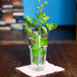 Stock Photo: Green rosebud in glass