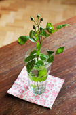 Green rosebud in glass — Stock Photo