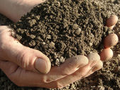 Handful of soil — Stock Photo