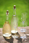 Dandelion wine — Stock Photo