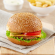 Hamburger — Stock Photo #6150931