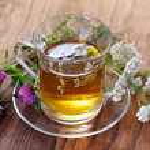 kruiden thee — Stockfoto