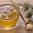 Fresh herbal tea — Stockfoto