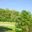 Stock Photo: Summer lake
