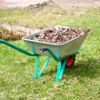 Stock Photo: Garden cart with heap of dry leaves