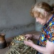 The old woman cuts an onions at itself — Stock Photo