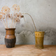 Stock Photo: Two vases with dry colours on a table