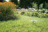 Grass Sprinkler — Stock Photo