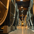 Wine barrels in cellars of winemakers — Stock Photo #5875829