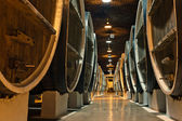Wine barrels in the cellars of winemakers — Stock Photo