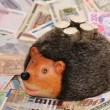 Hedgehog-coin box — Stock Photo