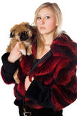 Attractive woman holding a pekinese — Stock Photo