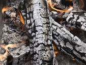 Firewood ashes — Stock Photo
