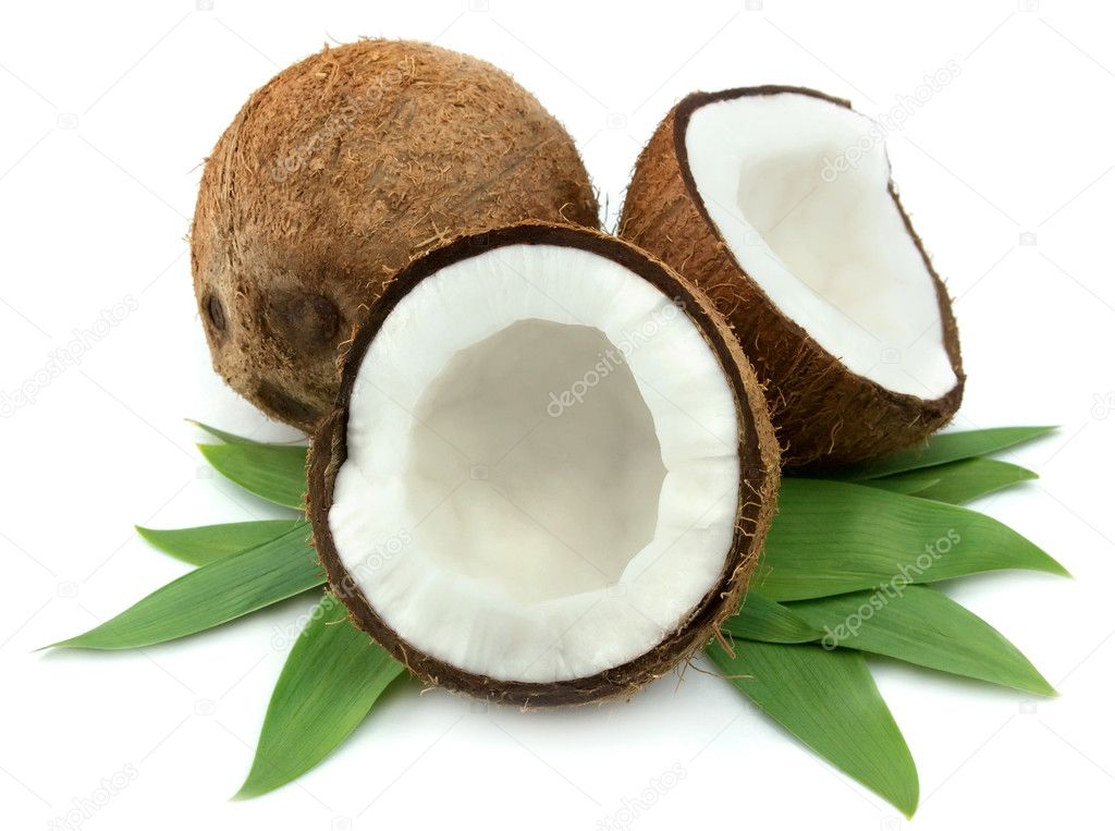 Coconut with leaves on a white background  — Stock Photo #5404097