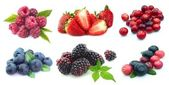 Collection of berries — 图库照片