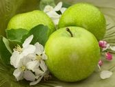 Green apples with flowers — Stock Photo