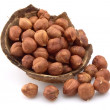 Filbert nuts — Stock Photo