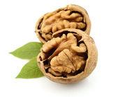 Dried walnut with leaf — Stock Photo