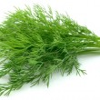 Young dill close up - Foto Stock
