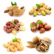 Stock Photo: Collection of nuts