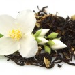 Jasmine tea - Stock Photo