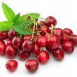 Cherry with mint leaf — Stock fotografie