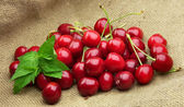 Cherry with mint — Stock Photo